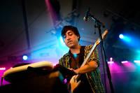2009-08-14 - Grizzly Bear spelar på Way Out West, Göteborg